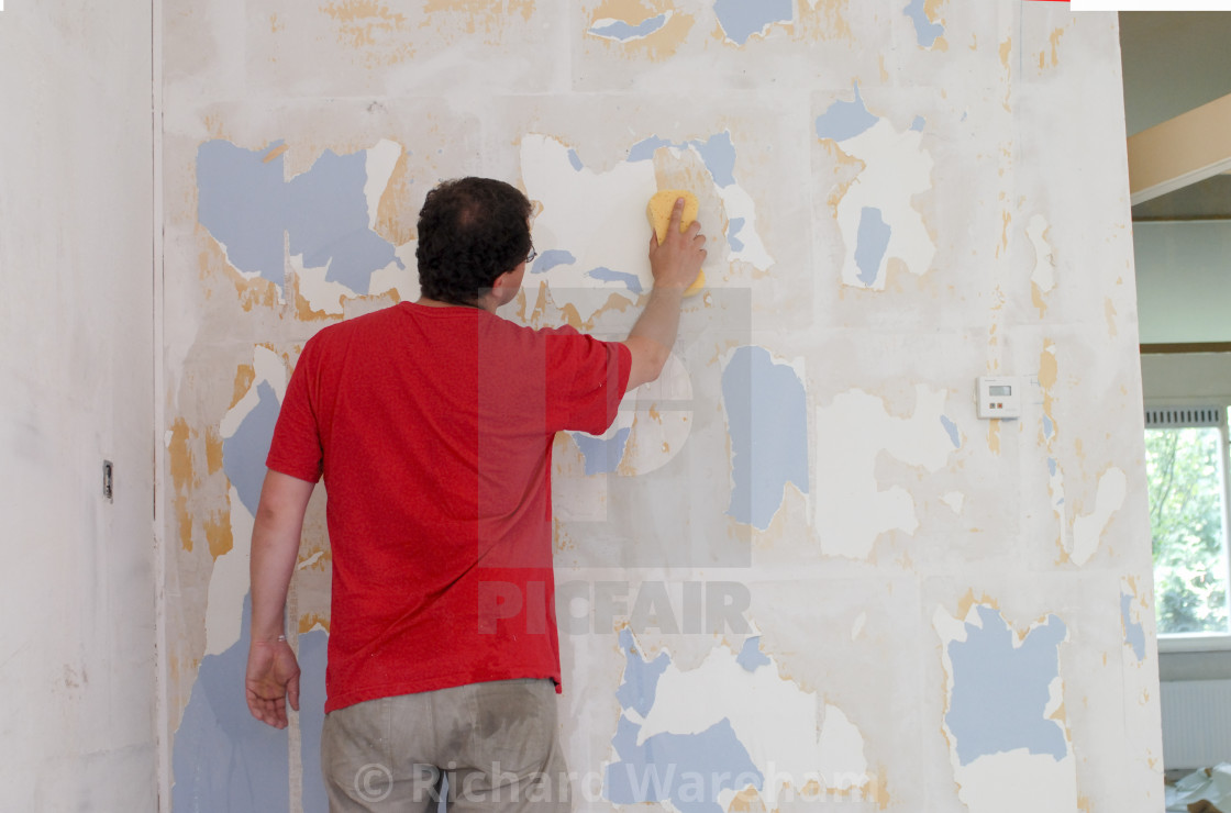 Man Stripping Wallpaper From Walls Stock Image