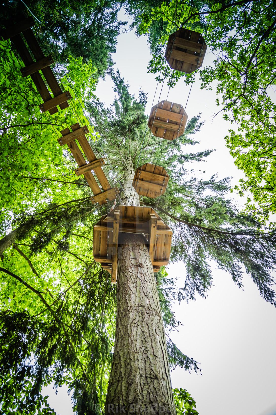 """""""Treetop walkway"""" stock image"""
