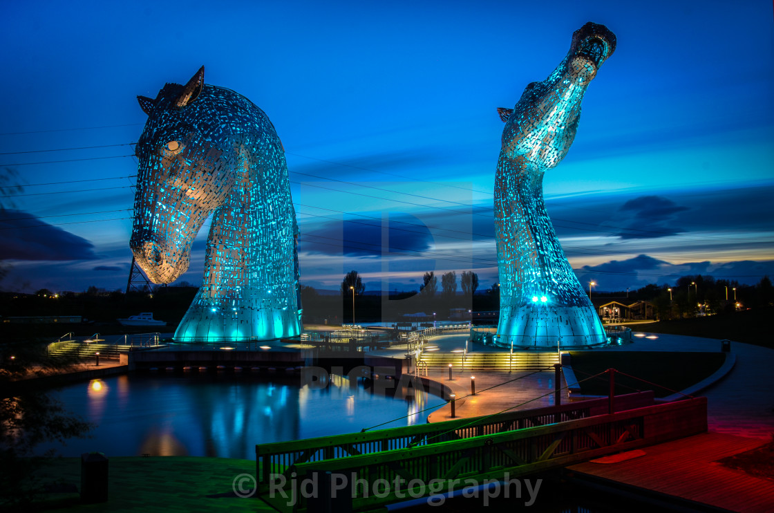 """Kelpie-colour"" stock image"