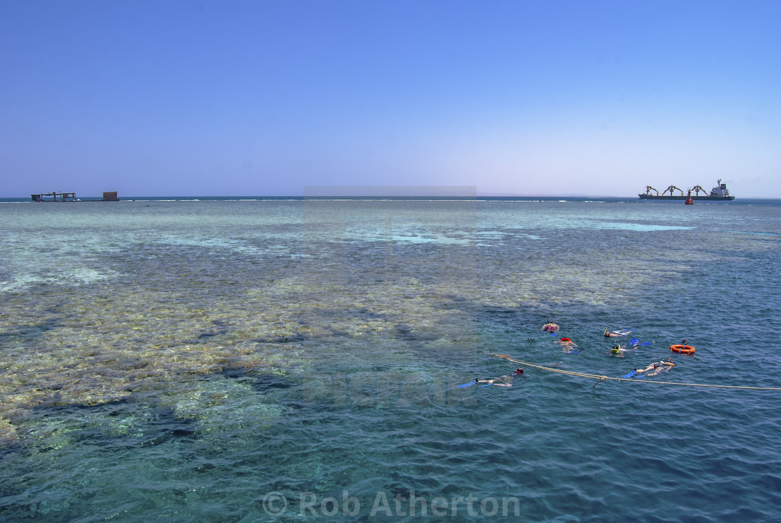 """Snorkellers on Jackson Reef in the Straits of Tiran near Sharm el Sheikh, Egypt"" stock image"