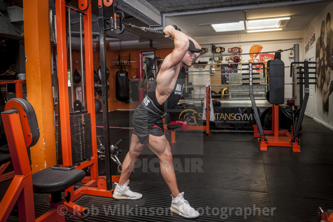 """""""bodybuilder exercising in the gym"""" stock image"""