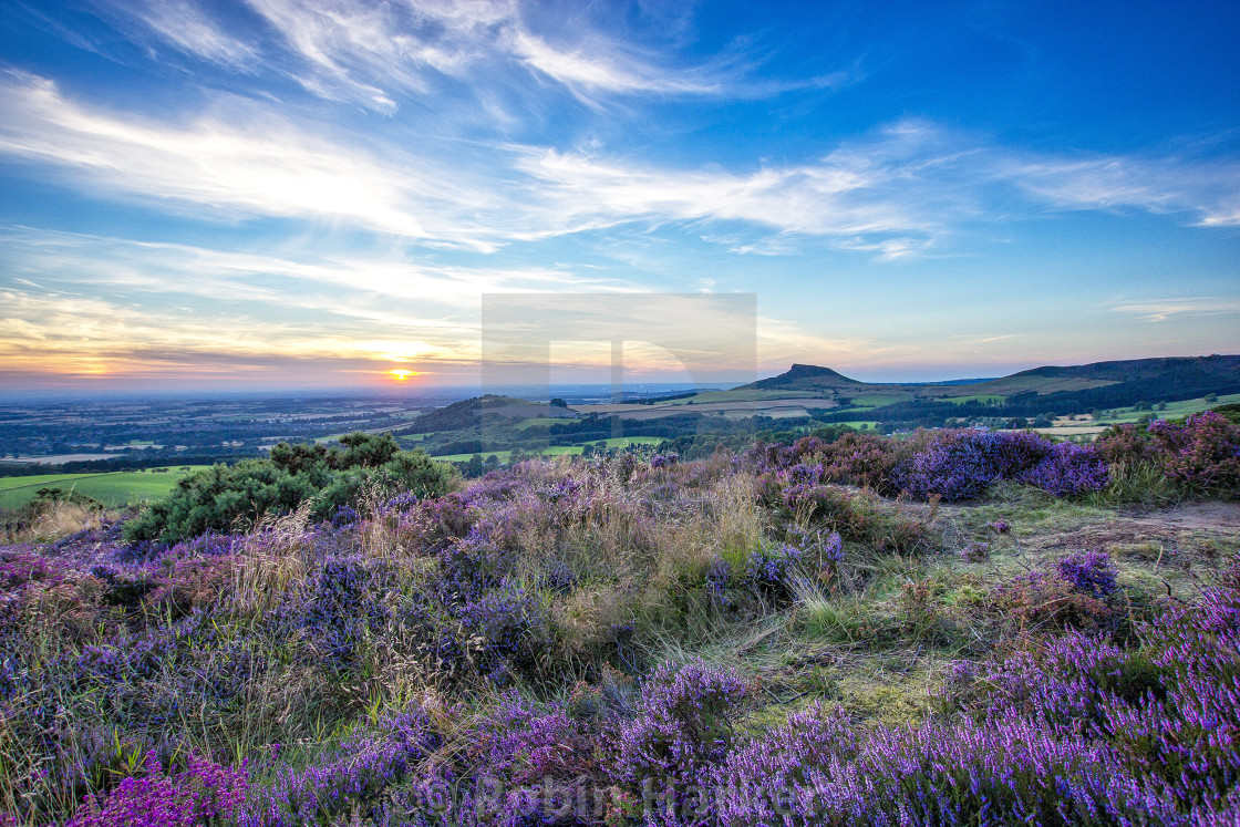 """Gribdale Sunset in August (1)"" stock image"