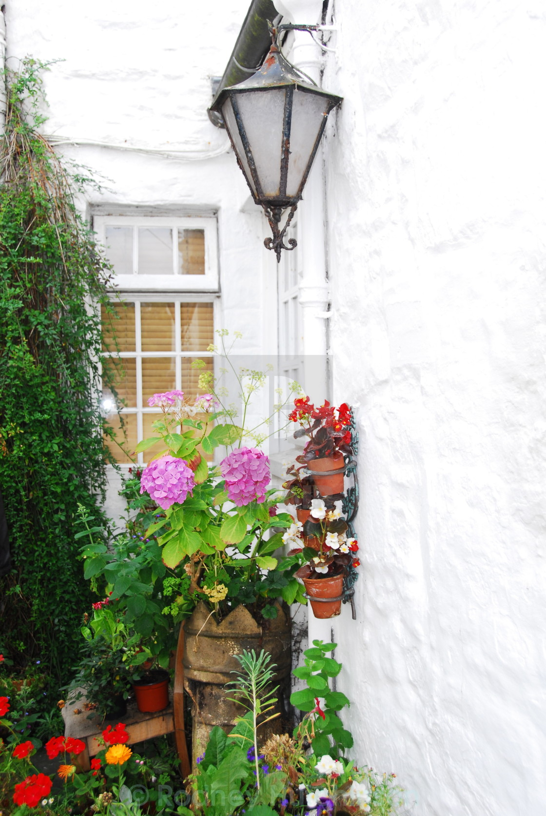 """Flowers and Lamp Dumfries and Galloway,"" stock image"