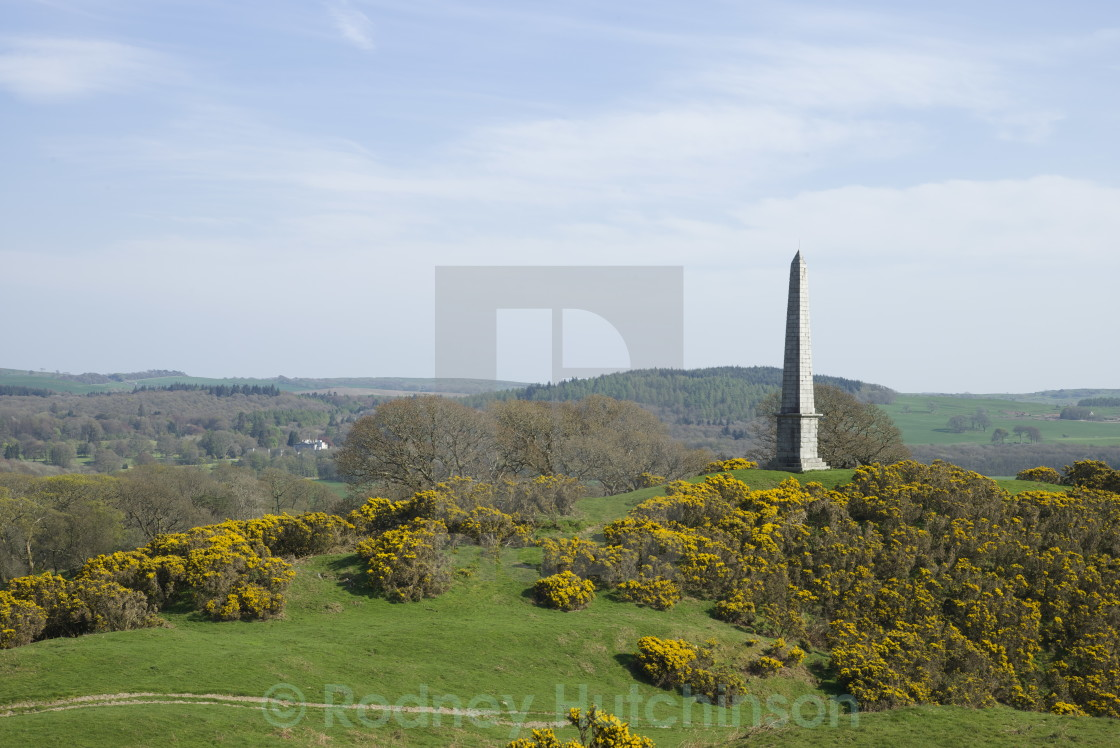 """""""Rutherford's Monument"""" stock image"""