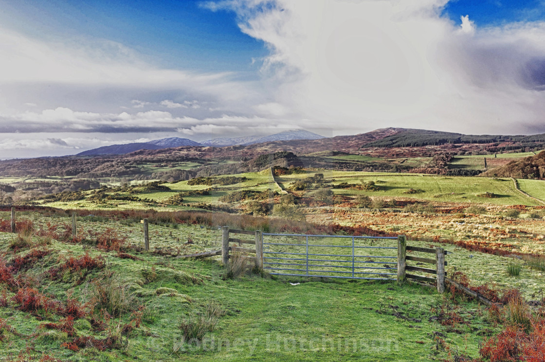 """""""Dumfries and Galloway Countryside"""" stock image"""