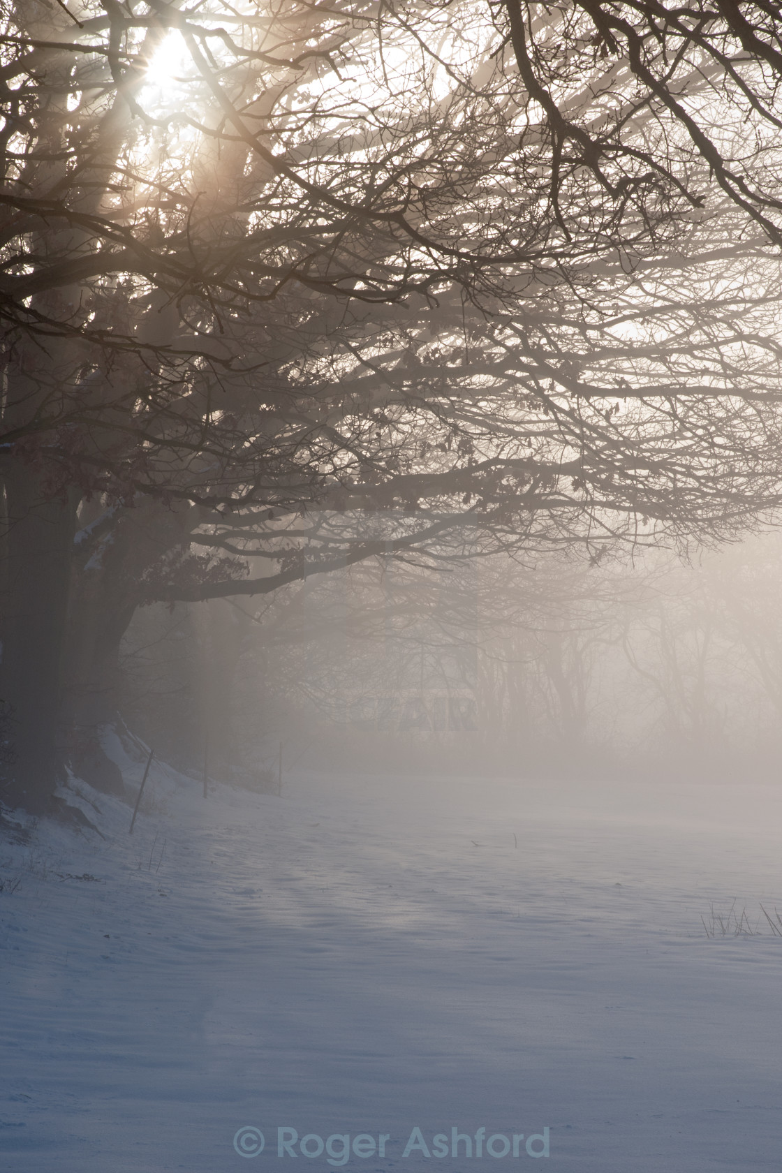 """Misty Dawn over Snowy Field"" stock image"