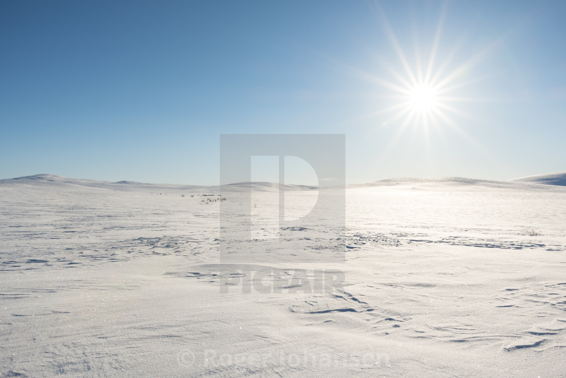 """Flat mountain covered in snow"" stock image"