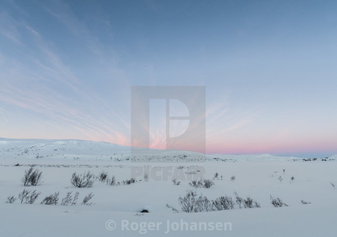 """""""Arctic colors at the mountain"""" stock image"""