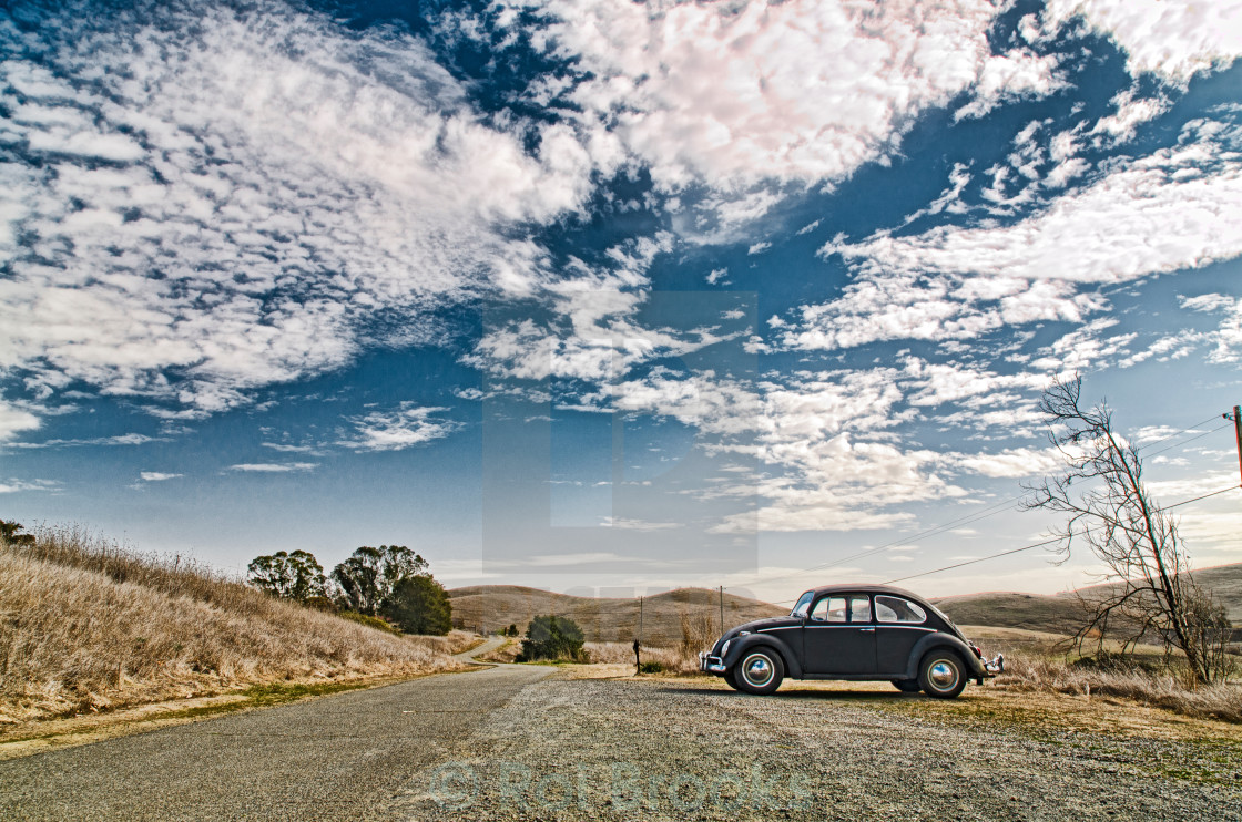 """Car in the wilderness"" stock image"