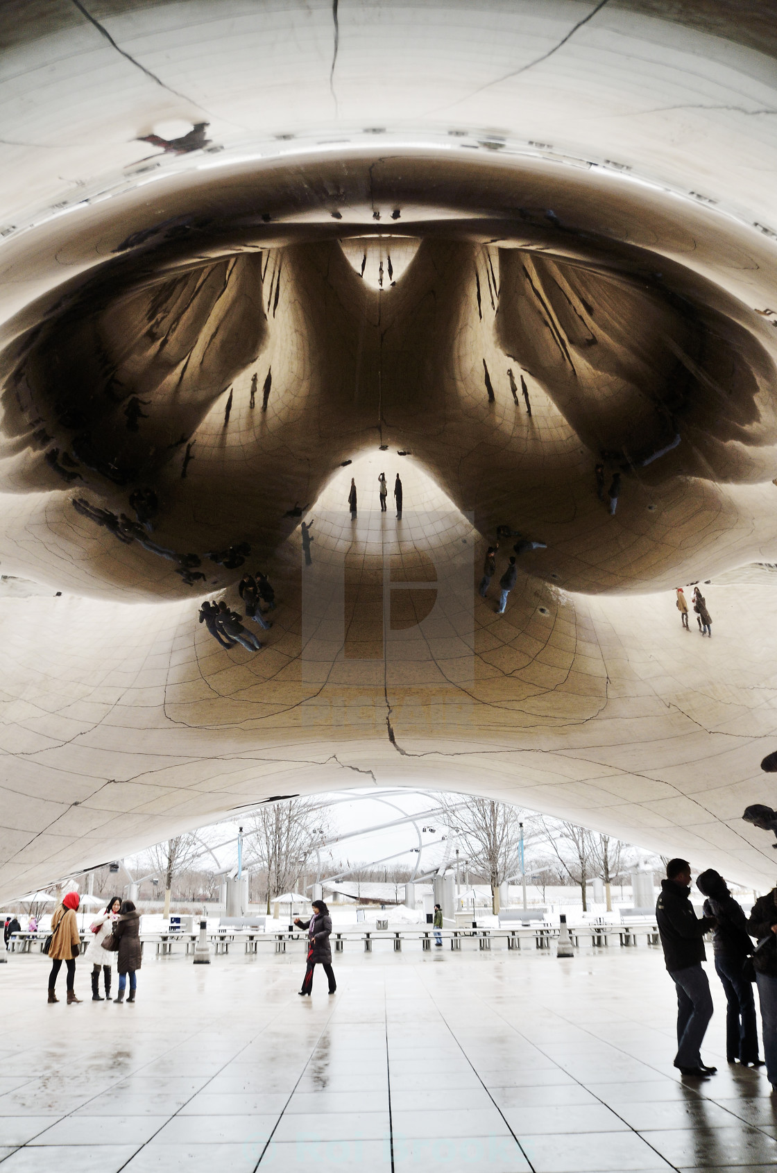 """The Chicago Bean"" stock image"