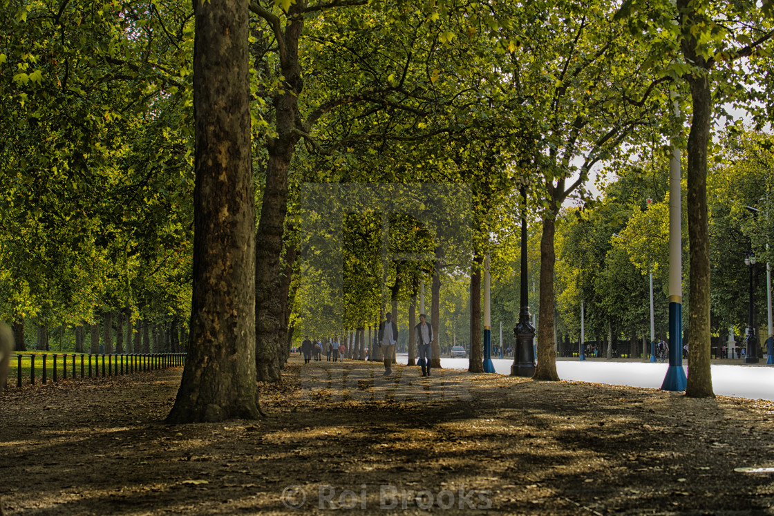 """Trees along The Mall in London"" stock image"