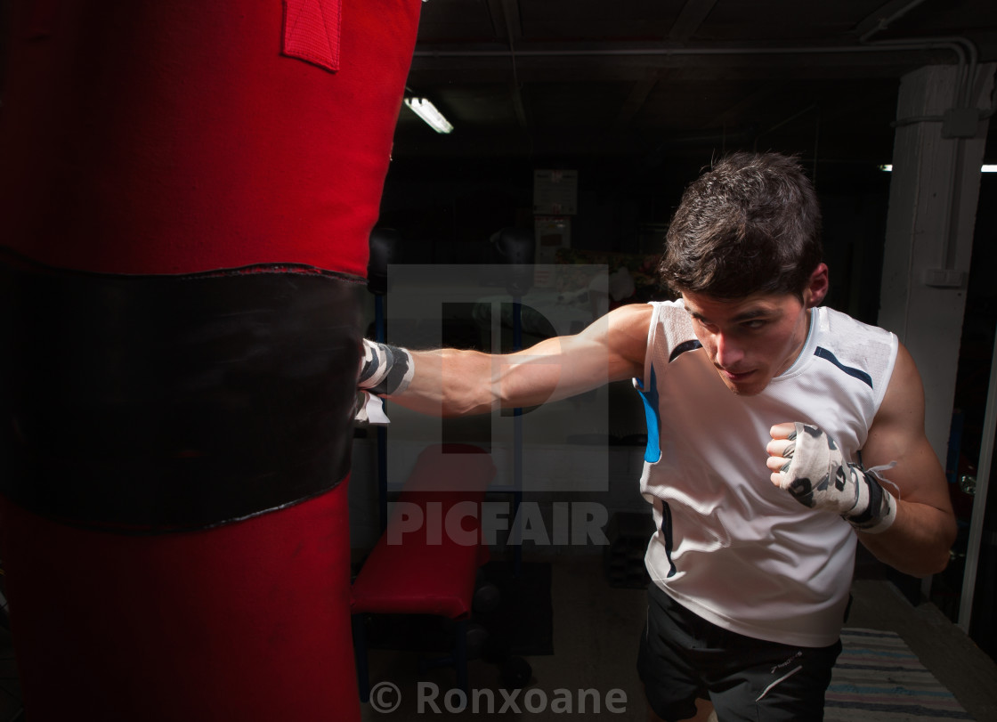 """Young caucasian Boxer training with a punching bag"" stock image"
