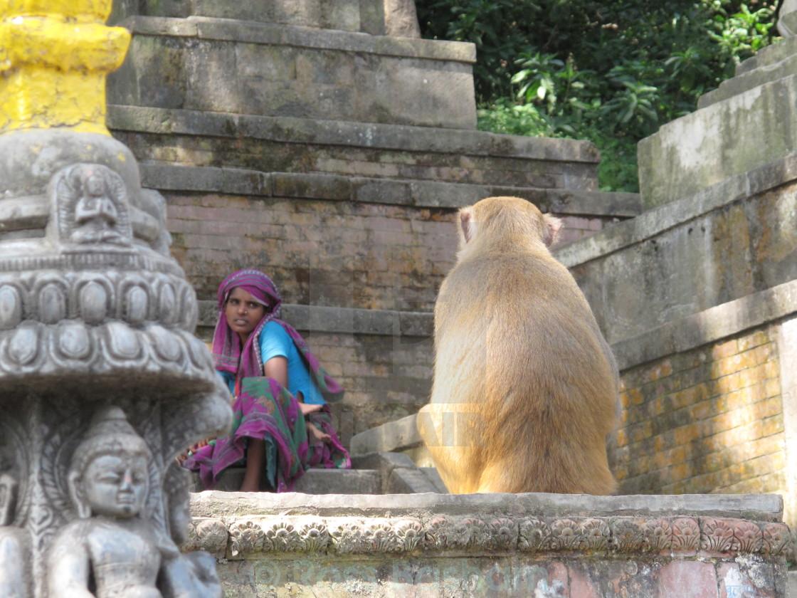 """Girl and monkey, Nepal"" stock image"
