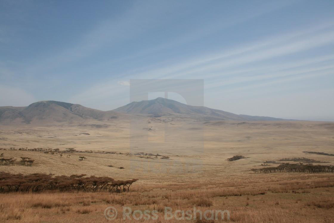 """African landscape"" stock image"