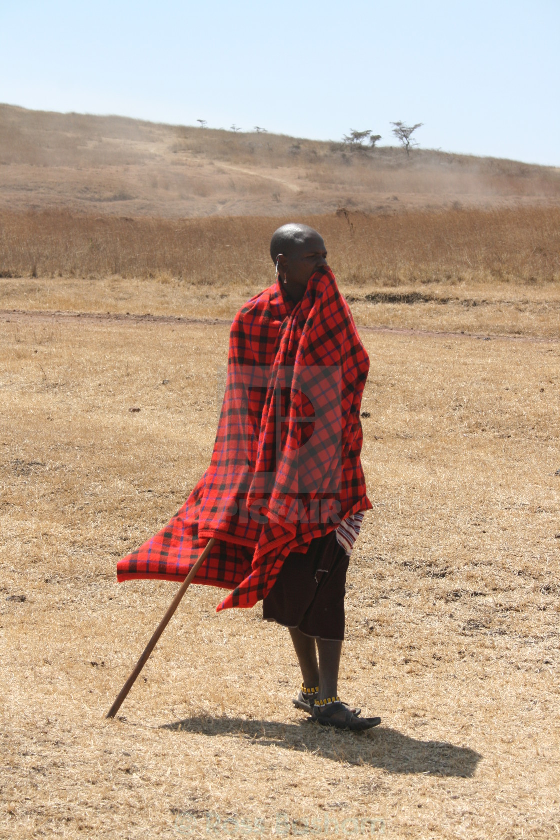 """Masai warrior in Africa"" stock image"