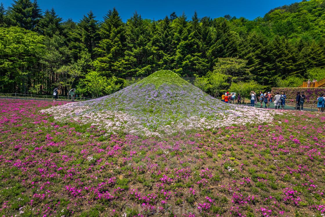 Motosu - May 24, 2019: Replica of Mount Fuji in the Shiba