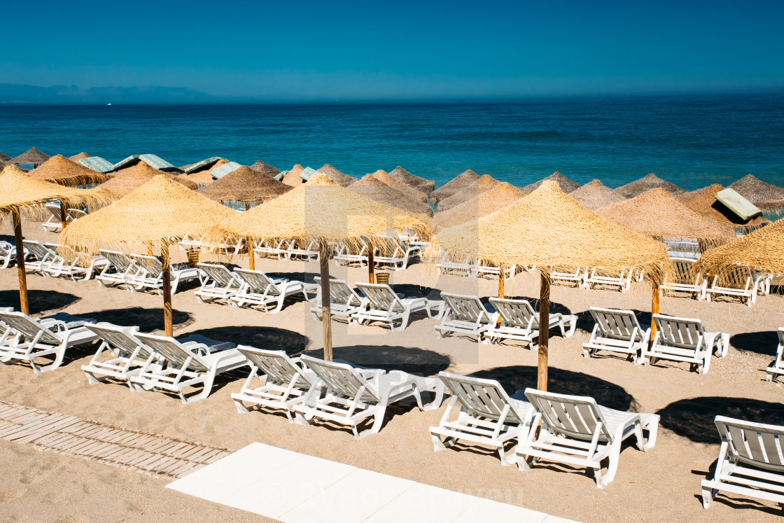 Row Beach Chairs The Mediterranean Sea License Download