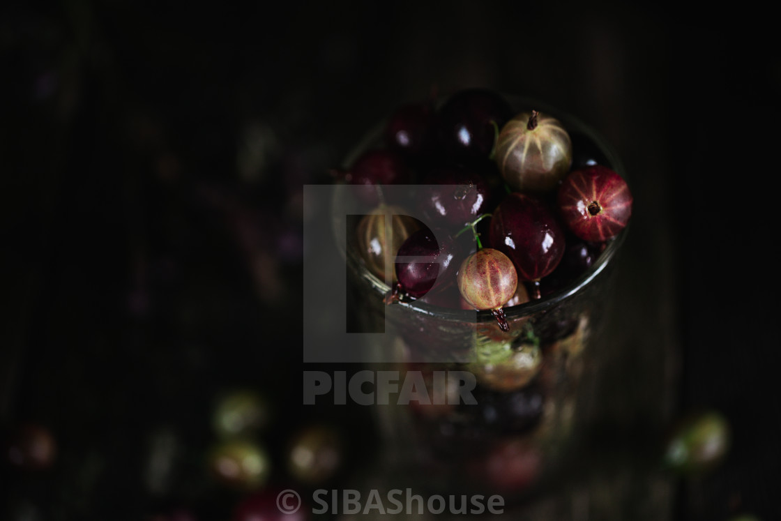 """Food photo of a gooseberry in glass on a wooden old texture background. Photography in a dark low key. Macro shot."" stock image"