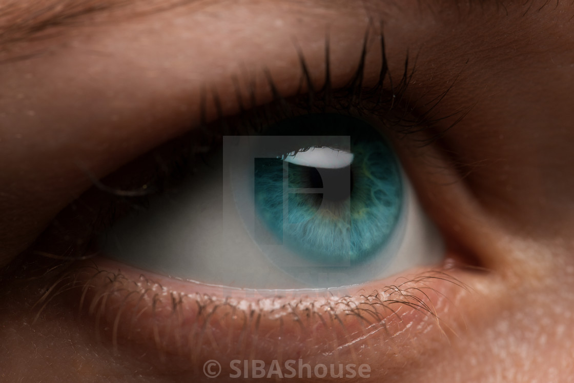 """Woman eye with contact lens applying, macro. Blue dilated pupil,"" stock image"