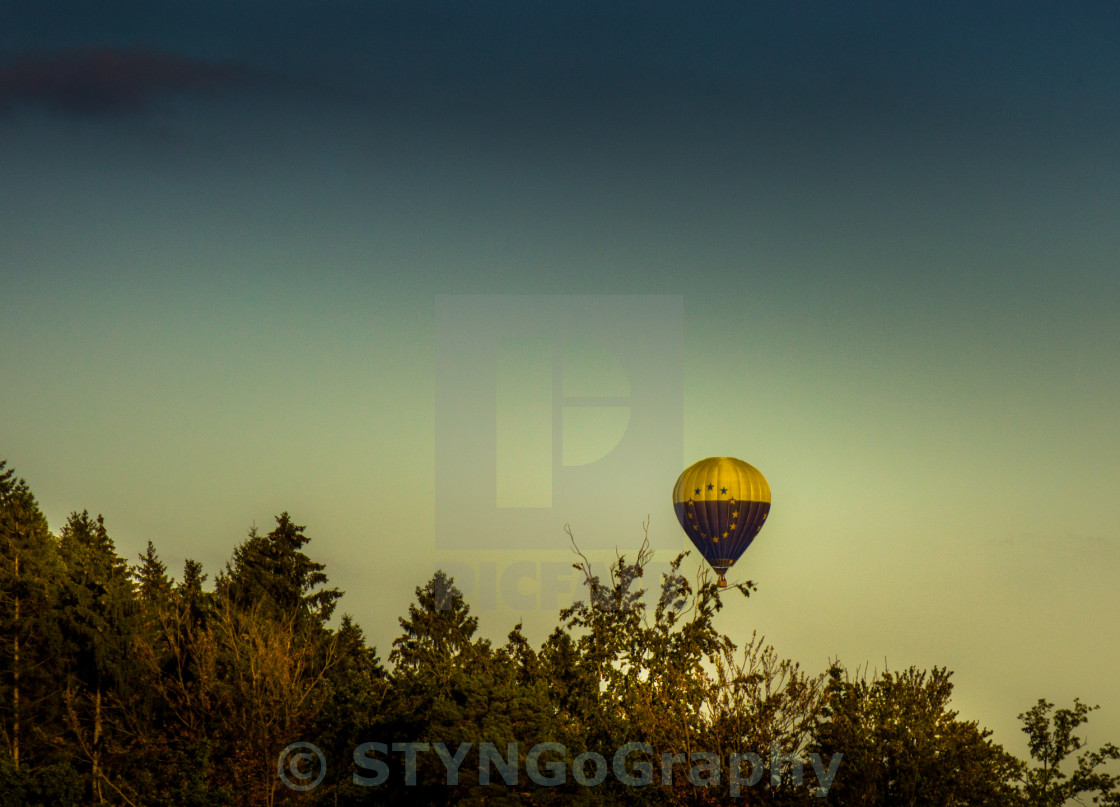 """""""Euro Hot-Air Balloon caught in a tree"""" stock image"""