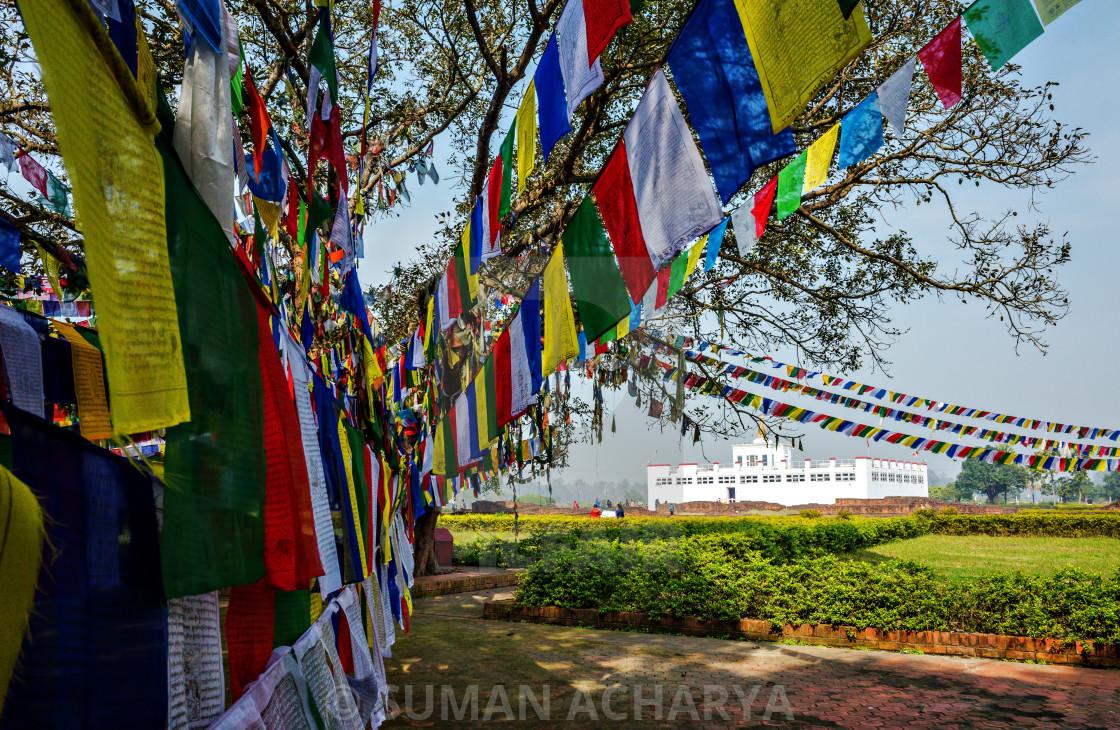 """Prayers Flag at Mayadevi"" stock image"