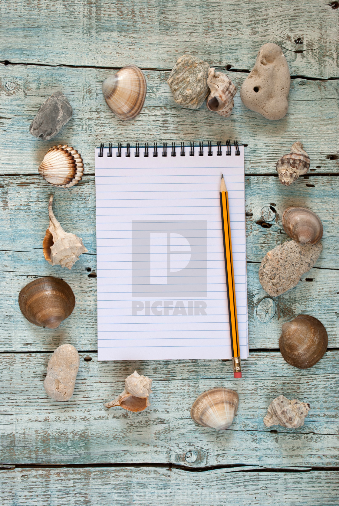 """""""Sea shells and notebook"""" stock image"""