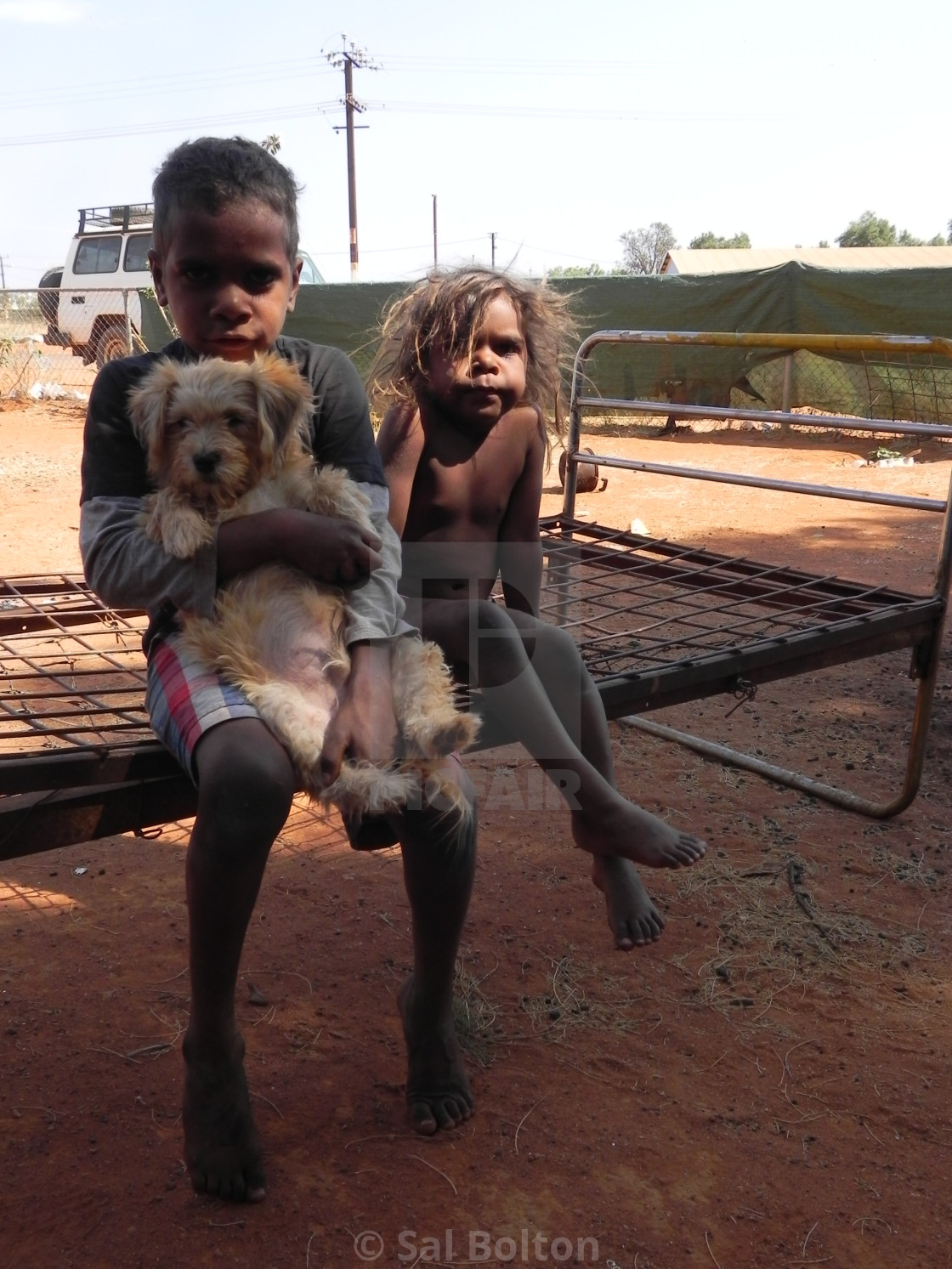 """Aborigine Boys with Puppy, Yuendumu, Australia"" stock image"