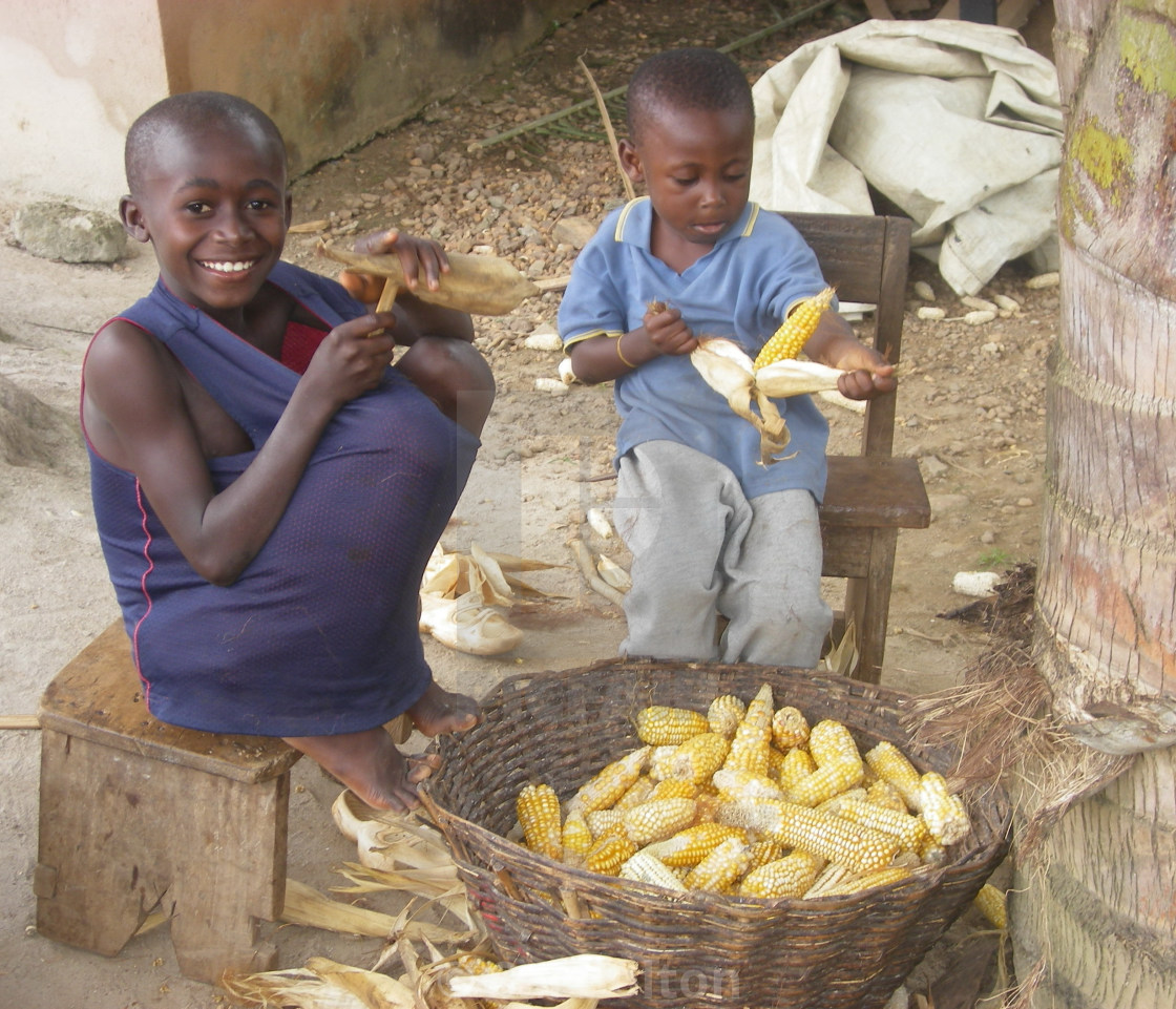 """Brothers stripping corn, Ghana"" stock image"