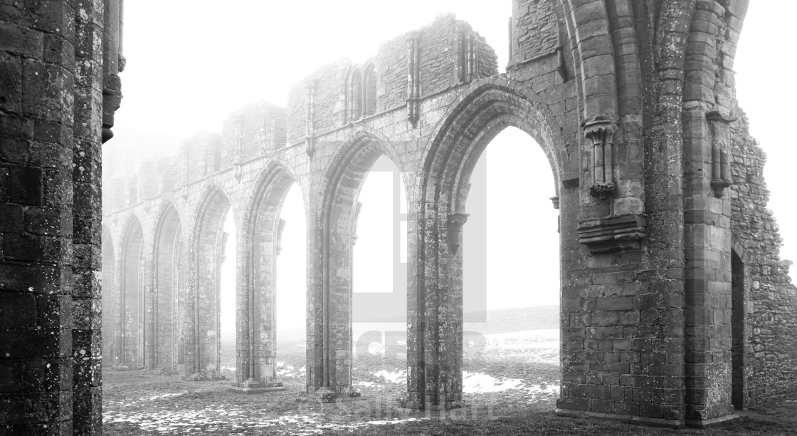 """Llanthony Priory"" stock image"