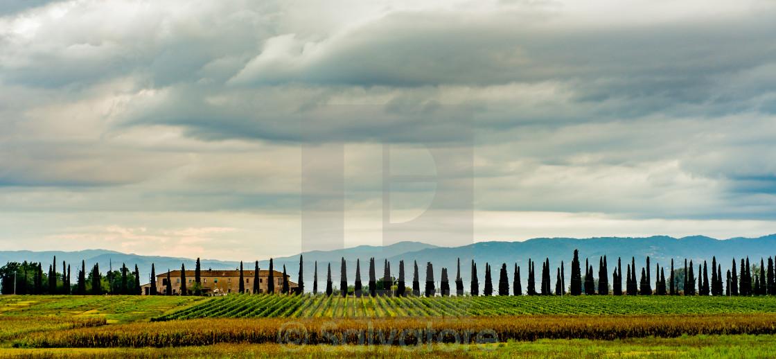 """""""Tuscan farmhouse at sunrise"""" stock image"""
