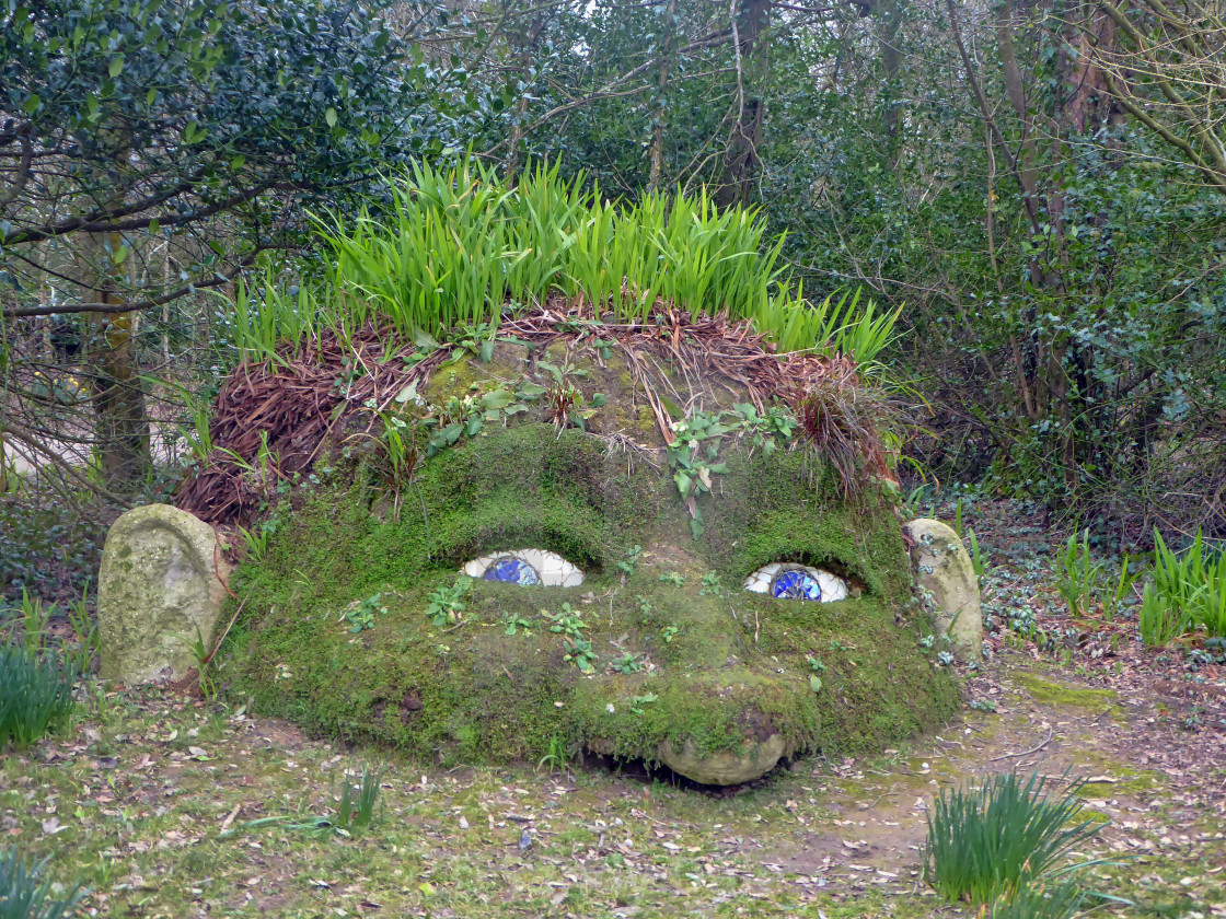 """Giant Head at Heligan Gardens"" stock image"