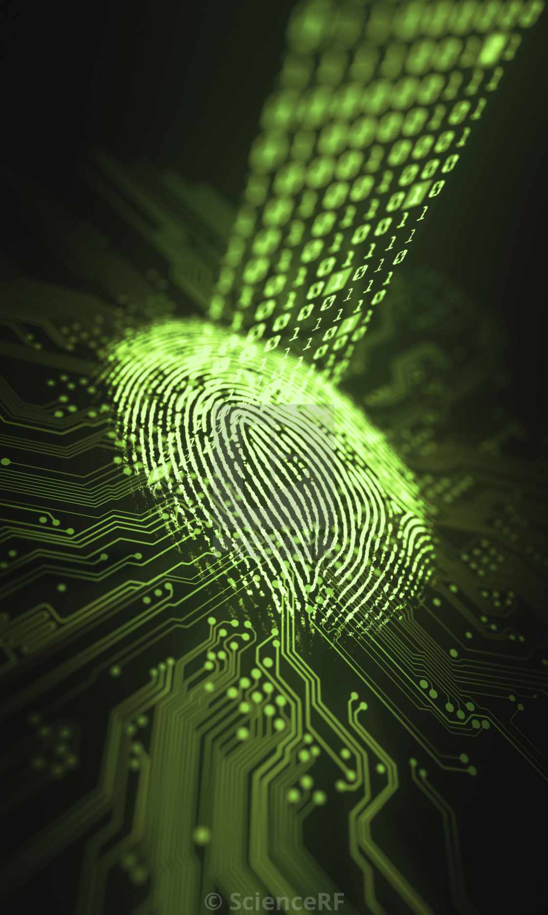 Printed Circuit Board Images Picfair Search Results Illustration Fingerprint And Stock Image