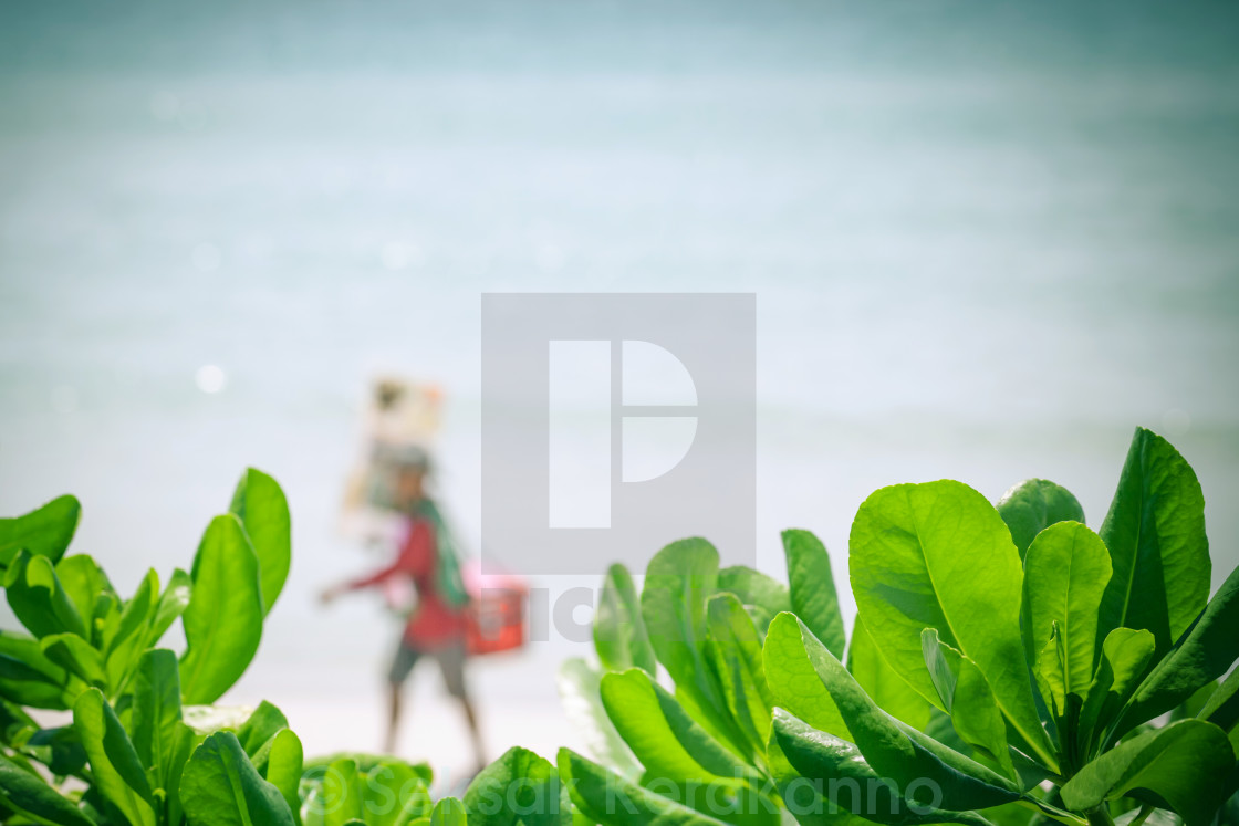 """Blurred of ice cream seller at tropical beach on summer ."" stock image"