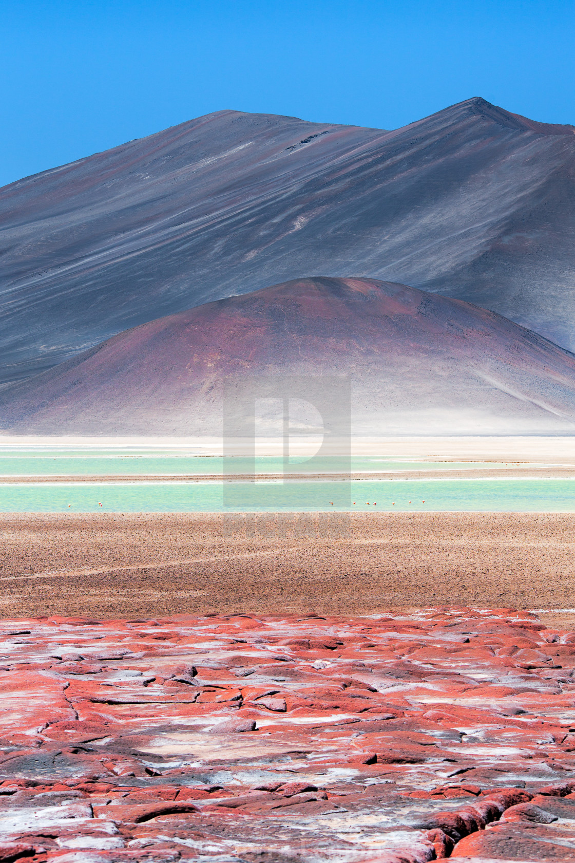 """Red Rocks (Piedras Rojas) and Salar de Aguas Calientes, Atacama, Chile"" stock image"