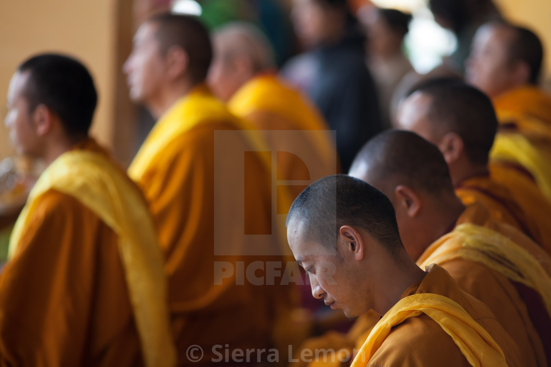 """Meditation, Dharamsala, India"" stock image"