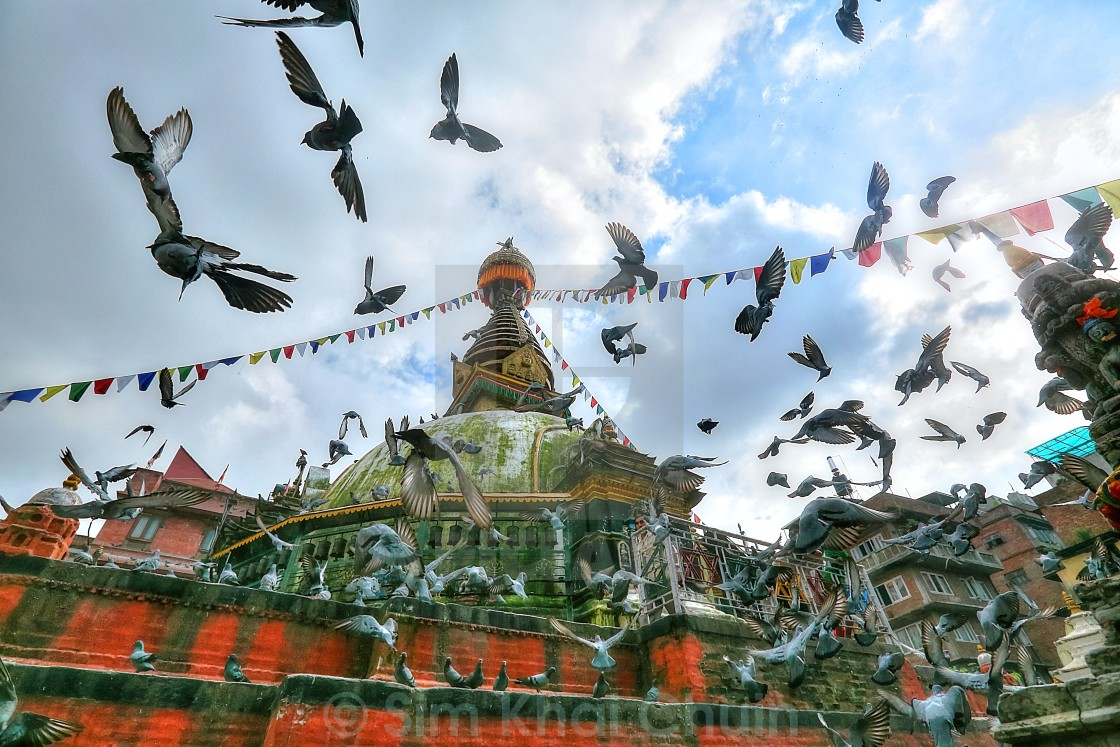 """pigeons and stupa"" stock image"