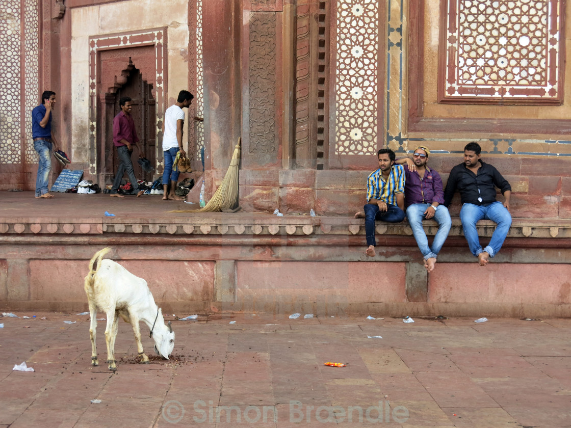 """Three men and a goat in Fatehpur Sikri, India"" stock image"