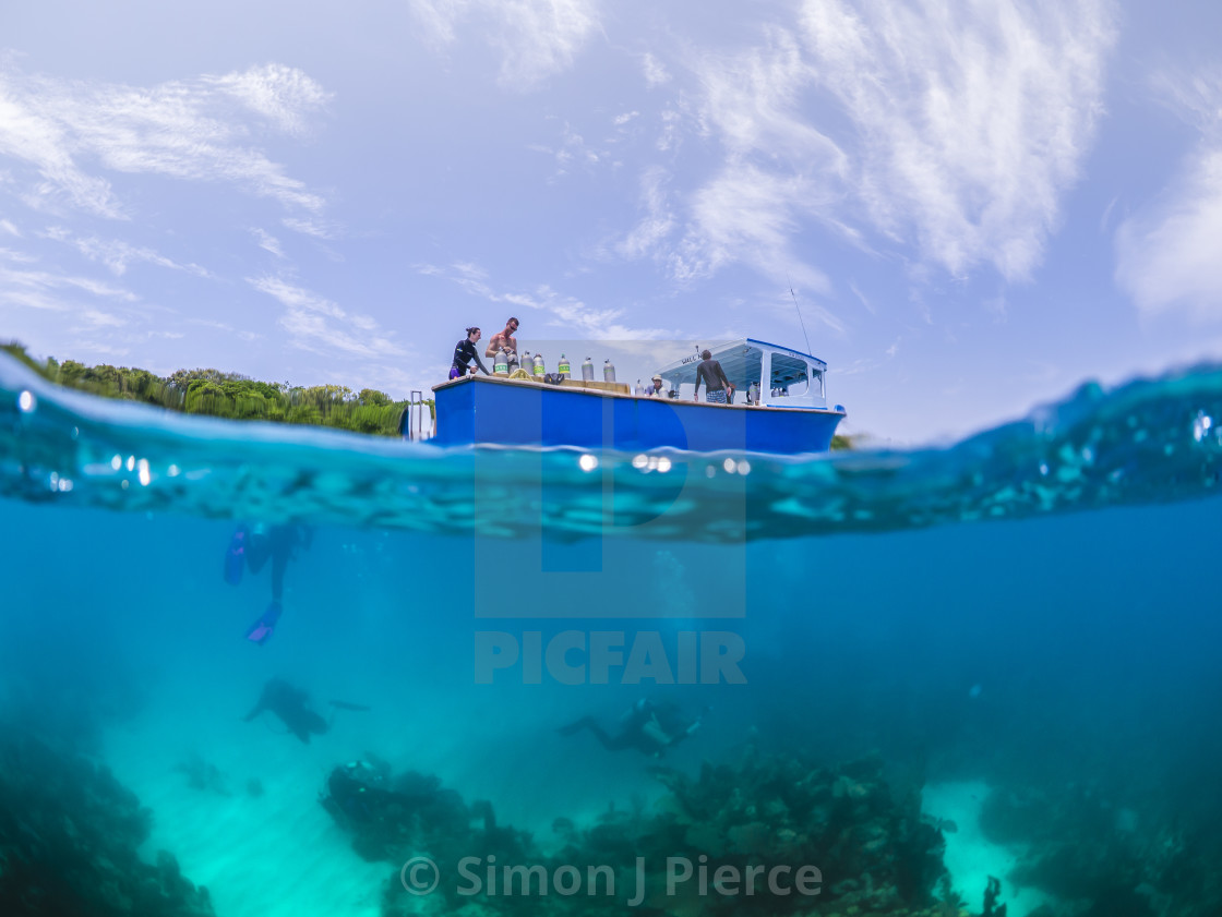 """Split level shot of scuba divers and dive boat off Utila, Honduras"" stock image"