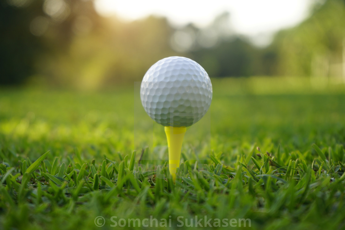 Golf Ball On Tee In Beautiful Golf Course License Download Or Print For 6 20 Photos Picfair