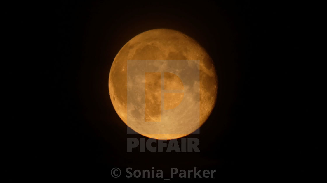 """Full Moon on a Clear Black Sky"" stock image"