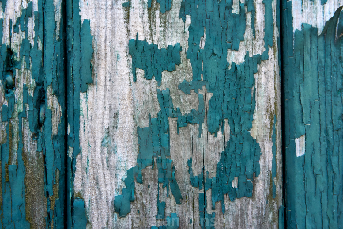 """grunge texture of old weathered wood"" stock image"