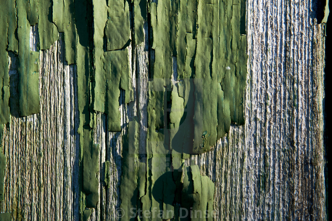 """""""grunge texture of old weathered wood"""" stock image"""