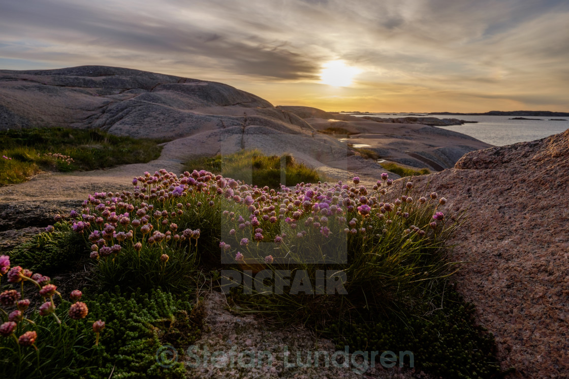"""Swedish west coast"" stock image"