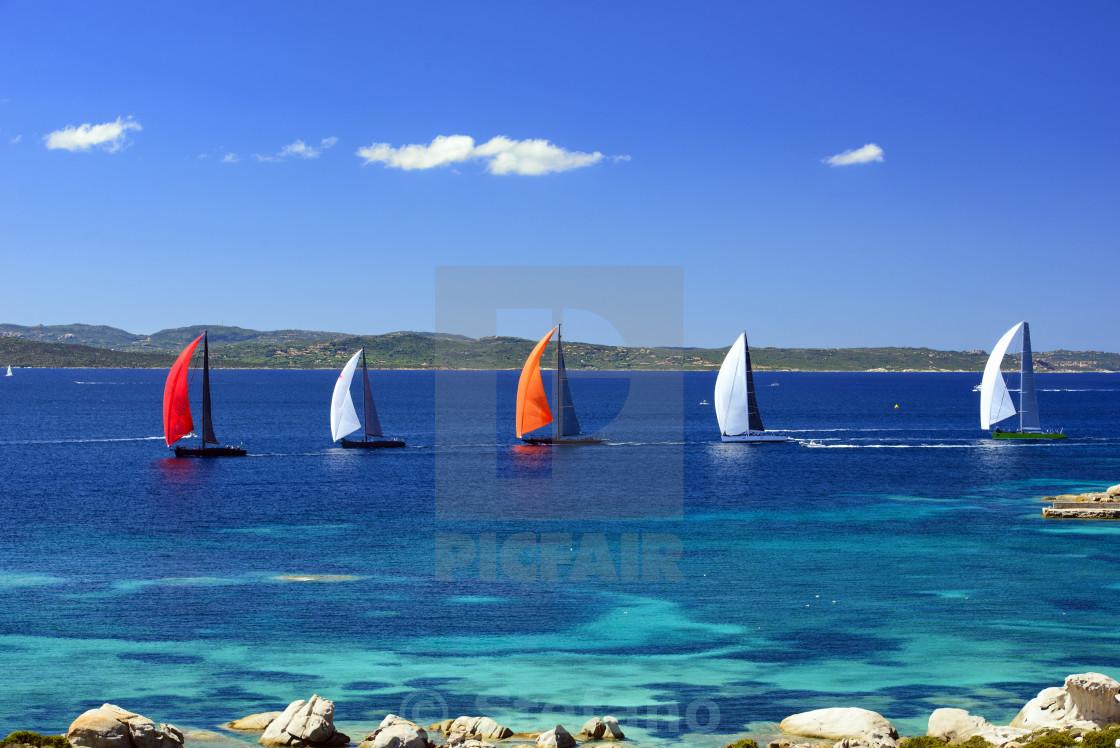 """Sailboats Racing"" stock image"