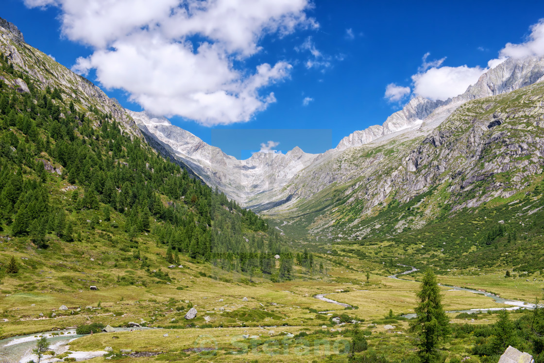 """Valley Landscape"" stock image"