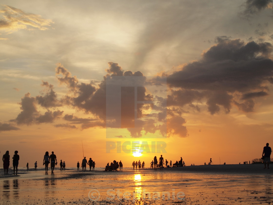 """Sunset Silhouettes"" stock image"