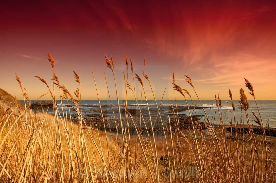 """Saltwick Bay"" stock image"