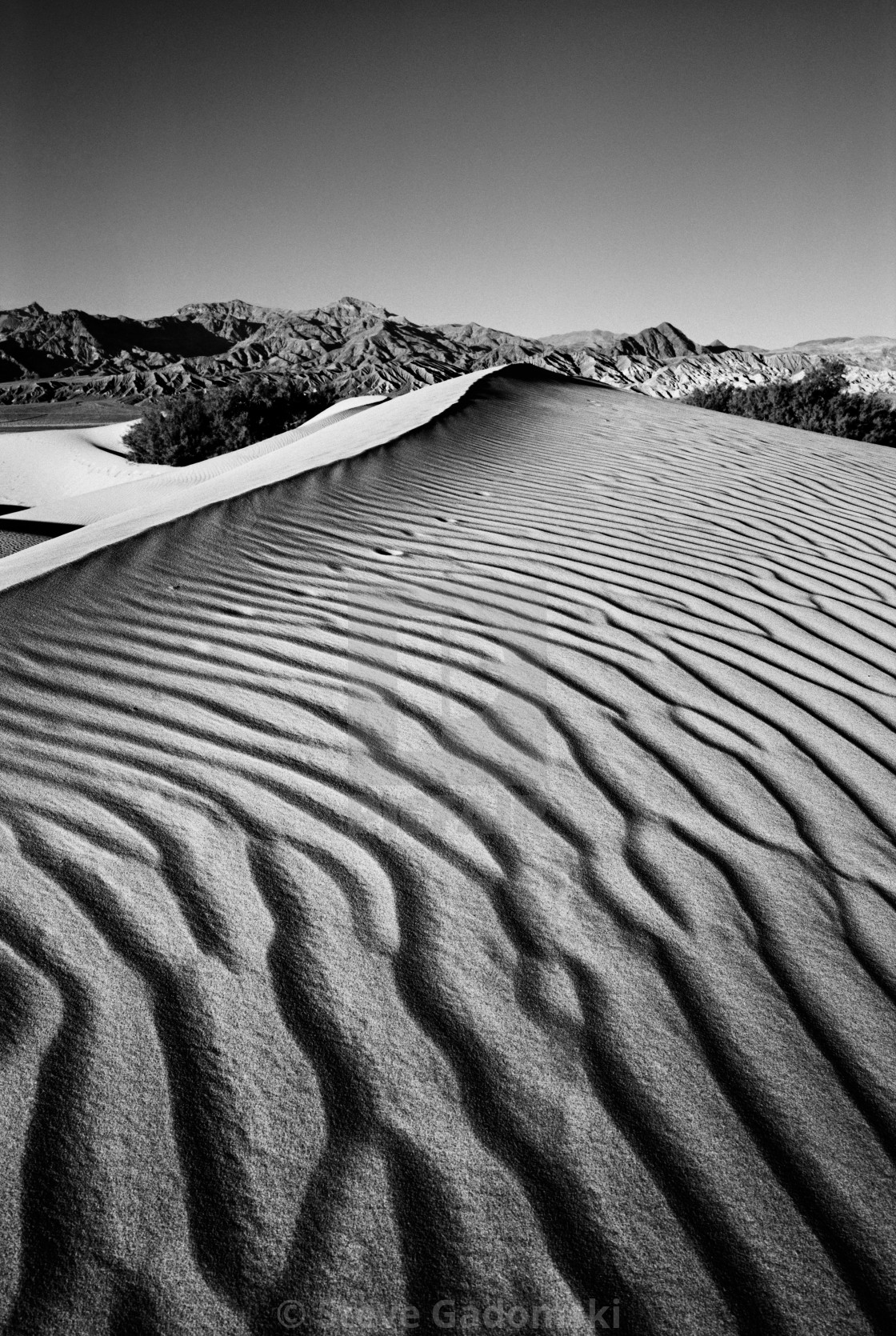 """""""Death Valley Dune"""" stock image"""