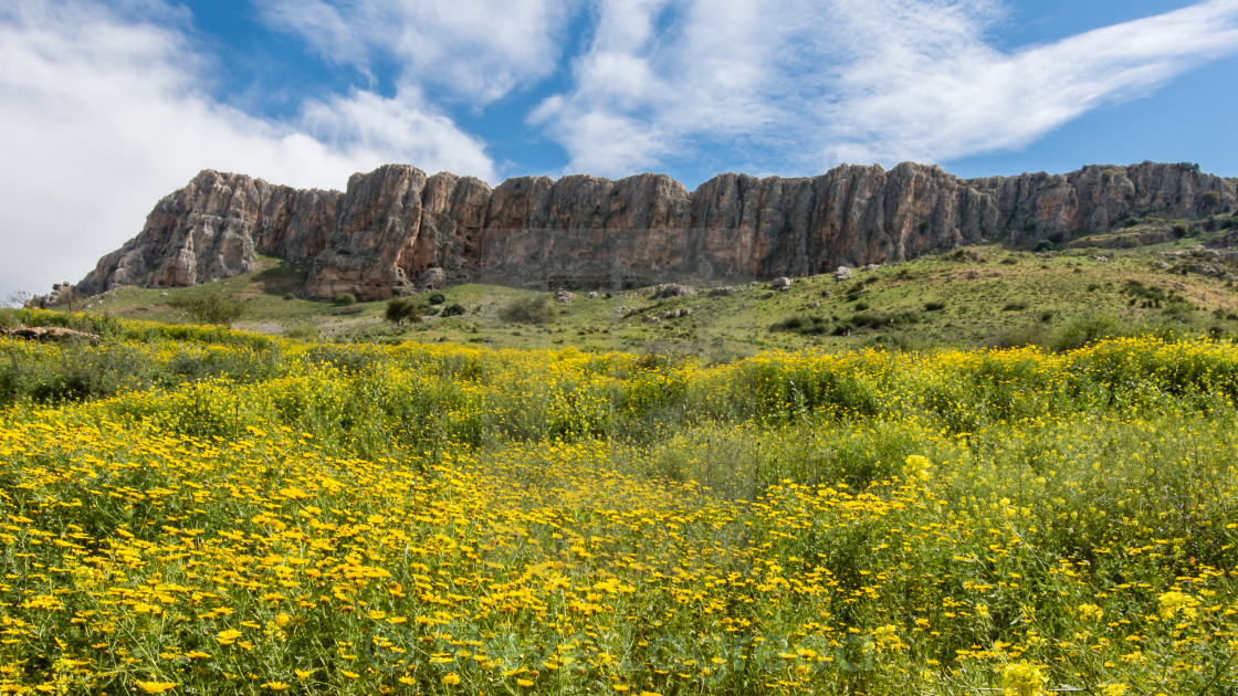"""Mount Arbel Cliffs, Arbel National Park, Jesus Trail, Israel"" stock image"