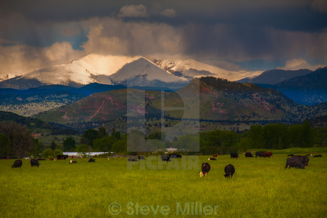 """Farm Land Colorado"" stock image"
